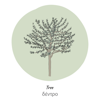 olive tree-label-01.png