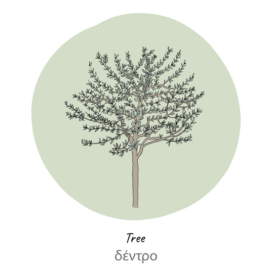 olive tree-label-01.png