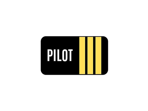 PILOT 3 STRIPES STICKER