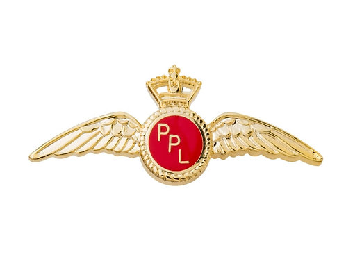 PIN PPL WINGS
