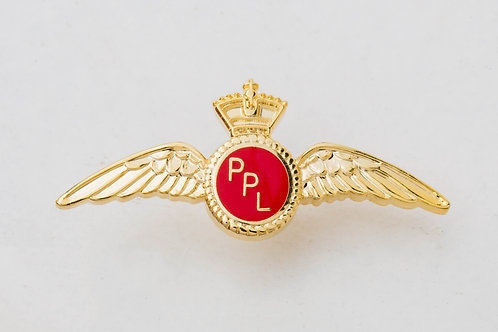 PIN PPL WINGS