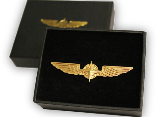 WINGS BROOCH (Gold color)