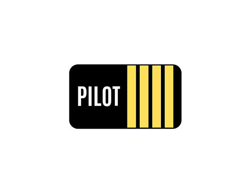PILOT 4 STRIPES STICKER