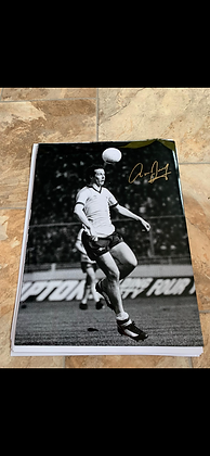 Brady action signed pic