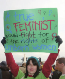 """Towards a More Consistent Feminism: A Commentary on """"Feminism is for Everybody"""""""
