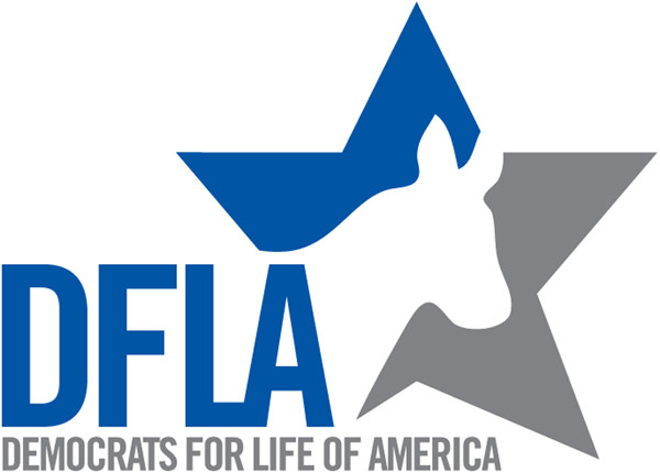 DFLA Logo blue and grey (1).jpg