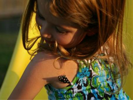 Butterflies: a short story