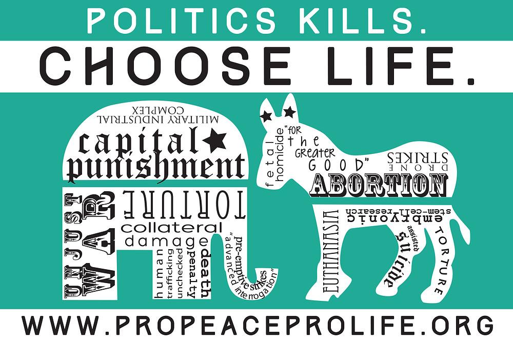 politics kills YARDSIGN15.jpg
