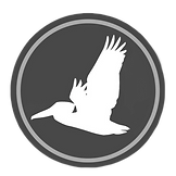 ASP logo_edited.png