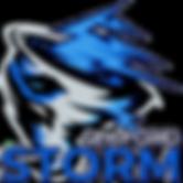 Seaford Storm (Trans).png