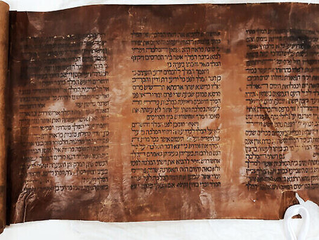 L'un des plus anciens rouleaux d'Esther donné à la Bibliothèque nationale