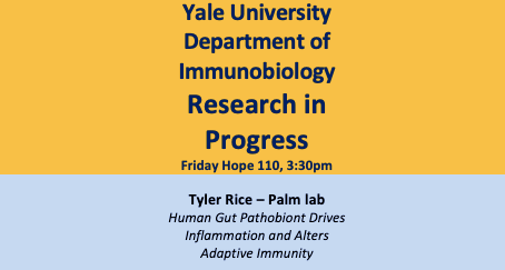 Join us for Tyler's Research in Progress!