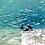 Thumbnail: Nolan Omura Underwater Luts For Video
