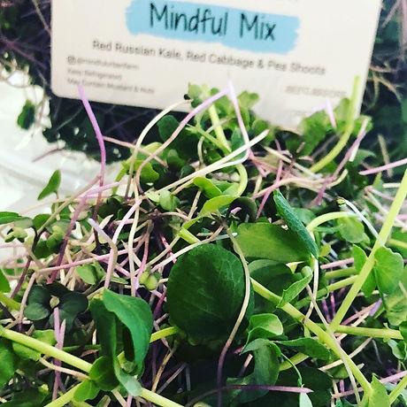 Mindful Mix .jpeg