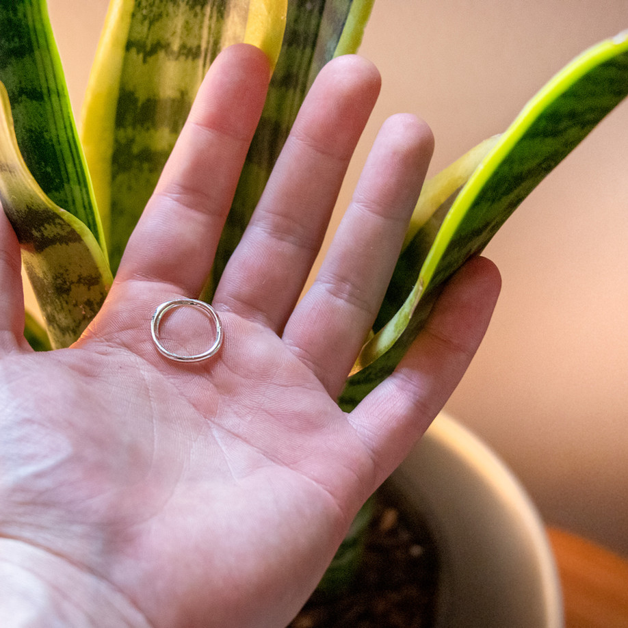 Organic Basic Ring
