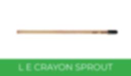 Crayon Sprout x Panopli