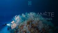 Planète Méditerranée VF (Documentaire Complet HD Full Documentary)