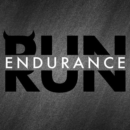 The Endurance Vol. 1