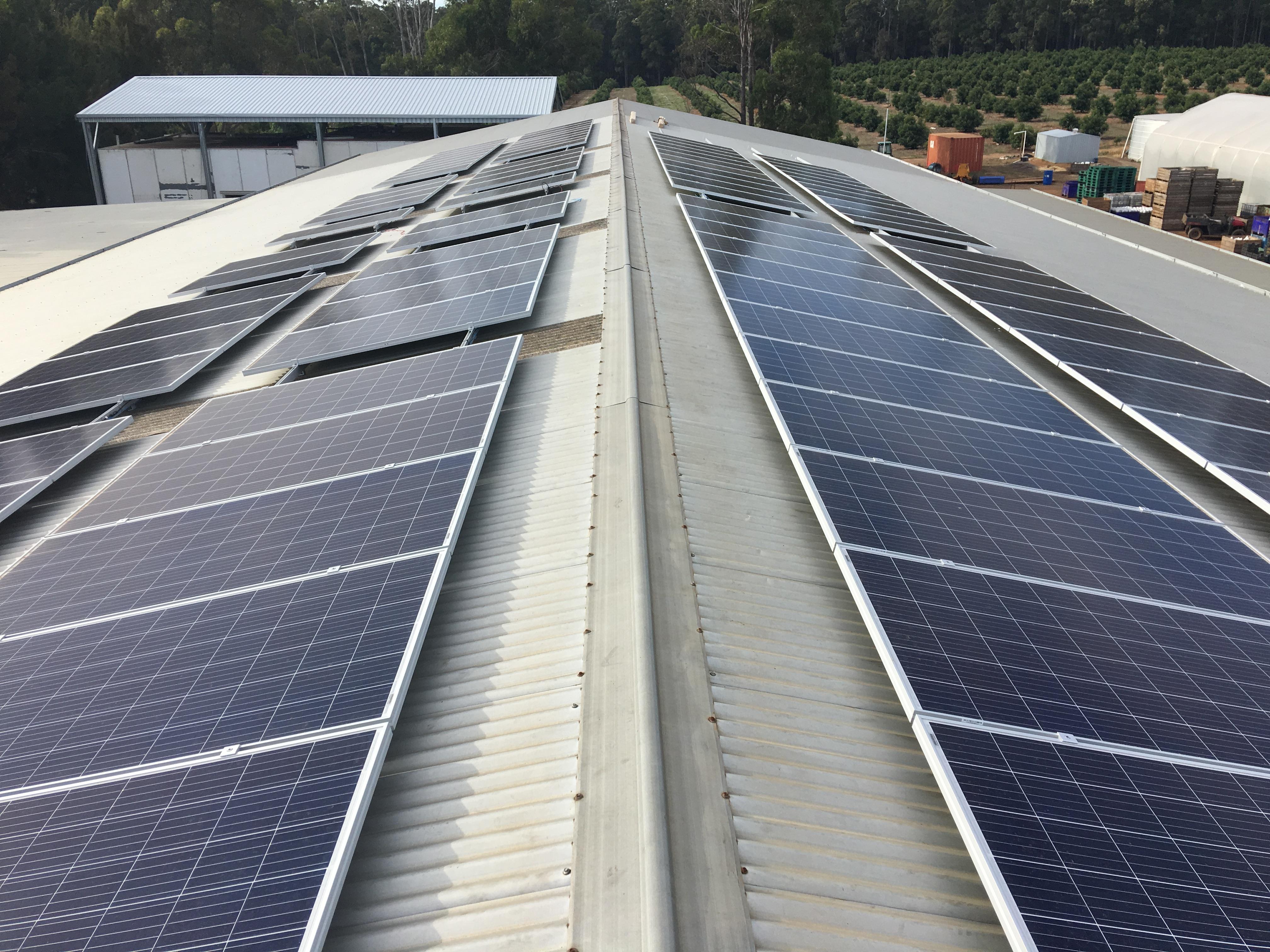Jardee | Unlimited Energy | Australia | Unlimited Energy
