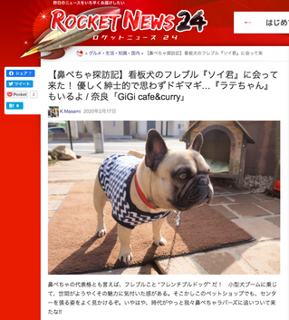Soy &Latte「ROCKET NEWS24」に登場
