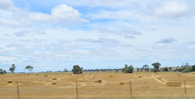 Rolling fields and open plains.