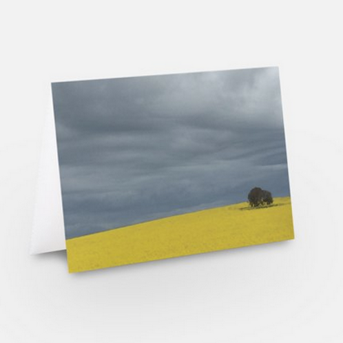 Greeting card, blank inside, plain white envelope
