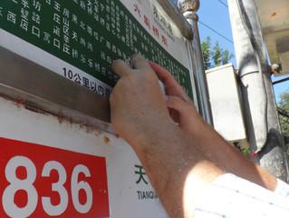 New York Scientist Visits Peking Man