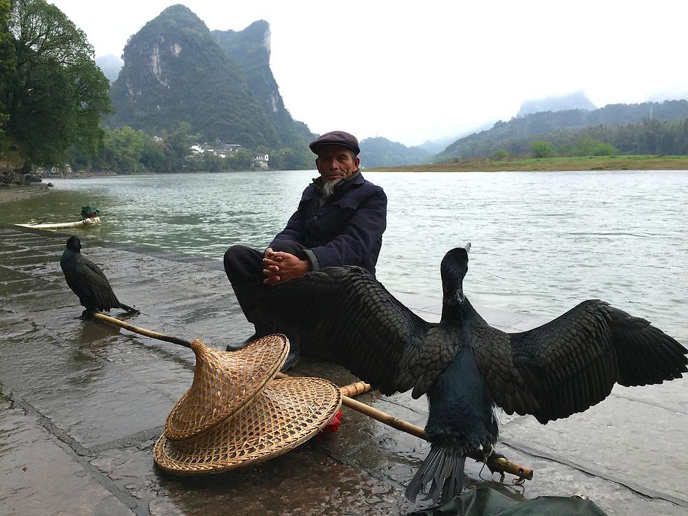 Yangshuo cormorant fisherman