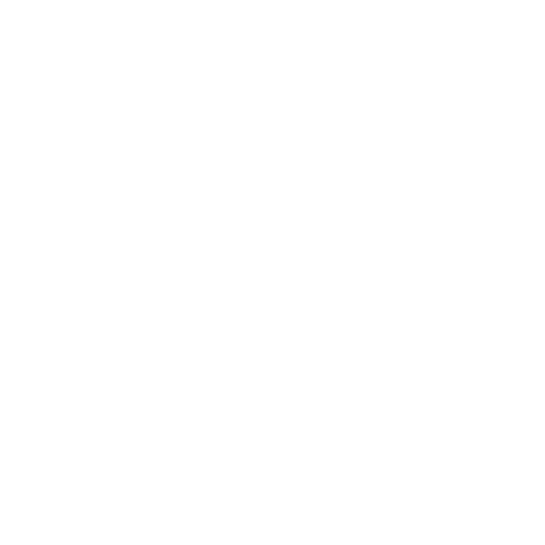 WEB-SDPF Tulip TRANS WHT (In-House Print