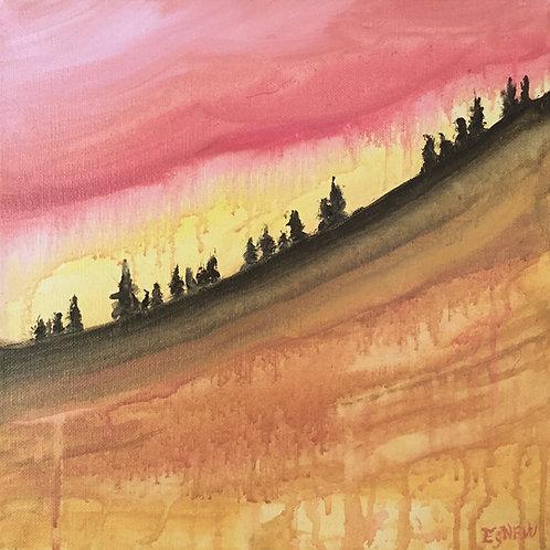 Sunset on the Sandstone