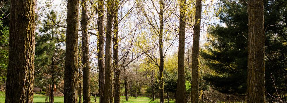 Lutheran Lakeside Photos-107.jpg