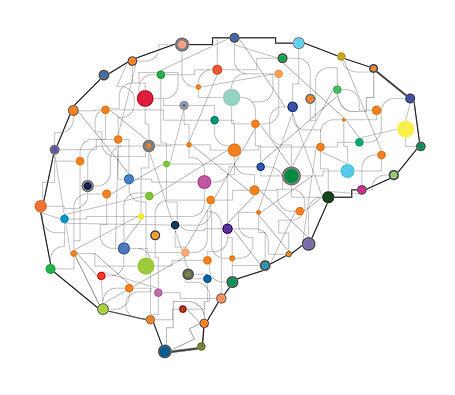 brain-connections-800-1.jpg