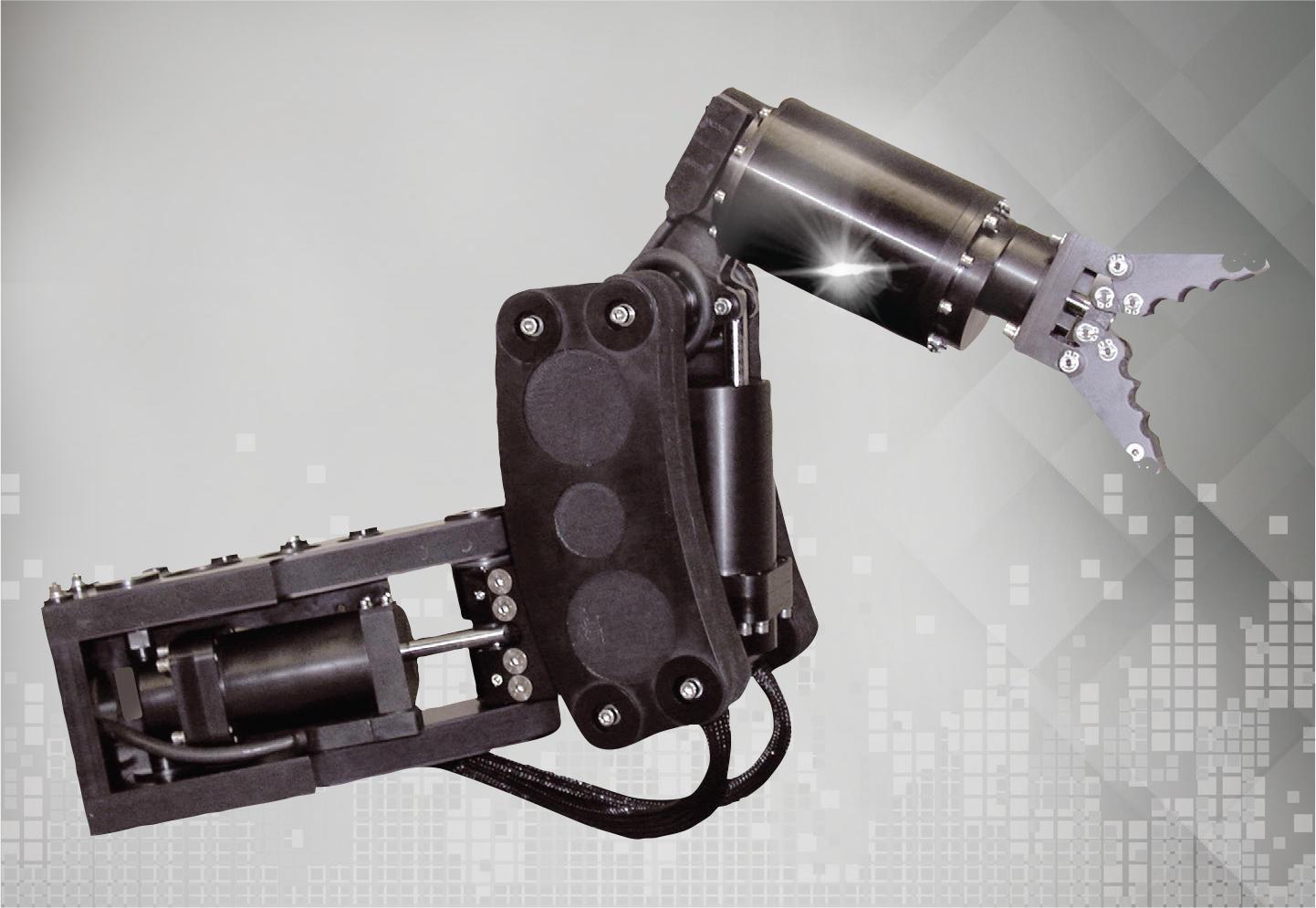 ARM 5E MICRO