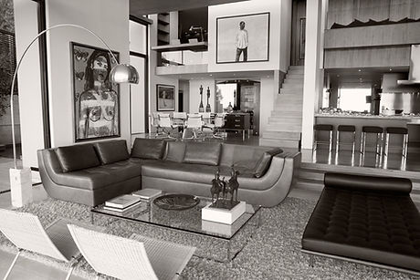 Designer Living Room