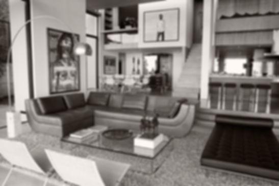 Designer Living Room
