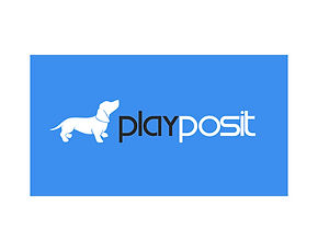 playposit1.jpg