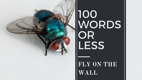 100 Words or Less: Fly on the Wall
