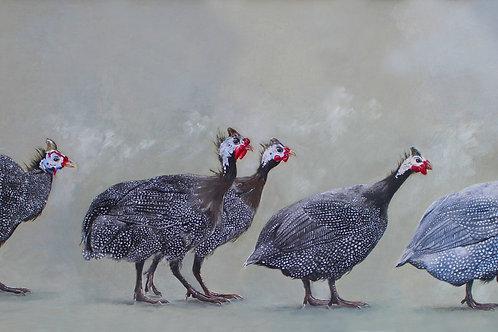 Five Guinea Fowl
