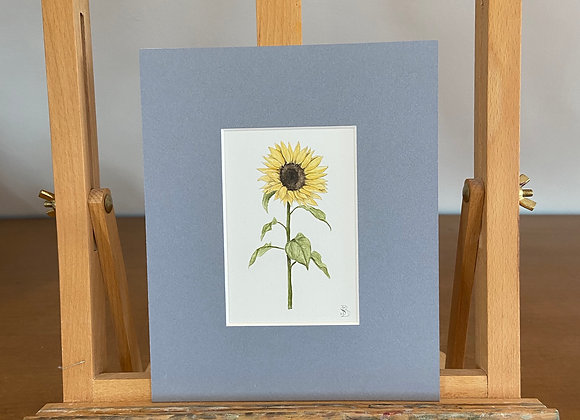Original Sunflower Watercolour