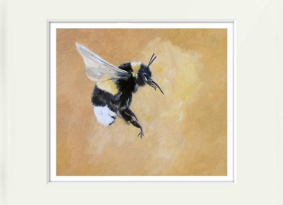 Bumble Bee II