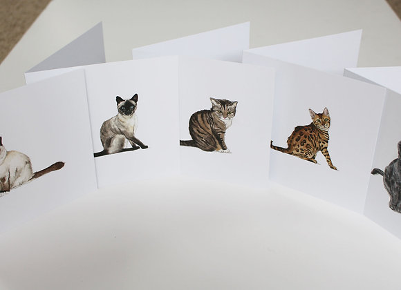 Mixed Pack of 5 Cat Greetings Cards