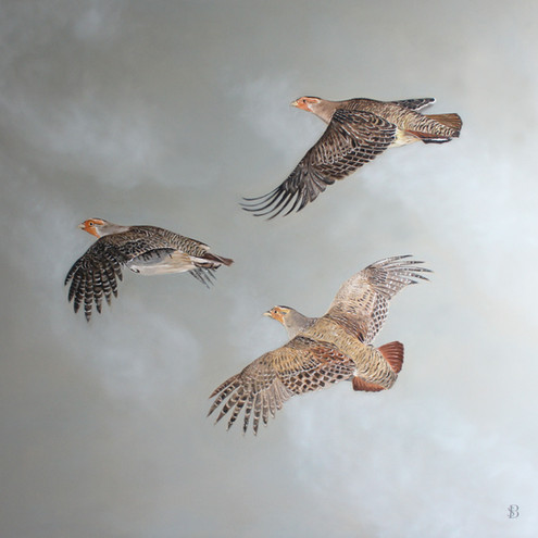 Three Flying Partridge