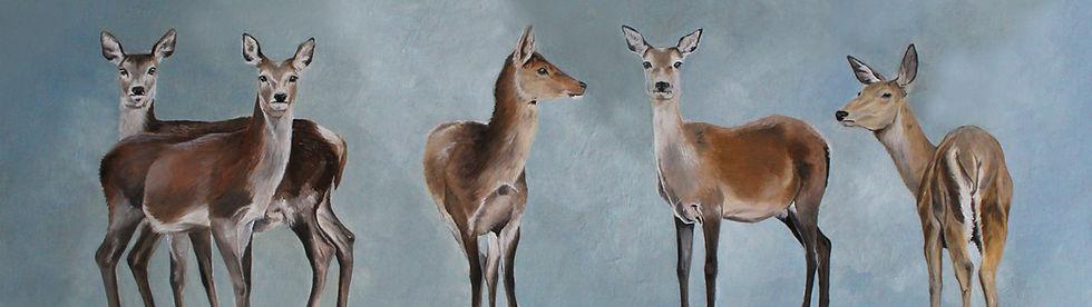 065- Five Fallow Deer.jpg