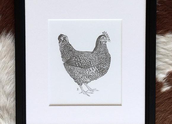 Original Chicken Drawing