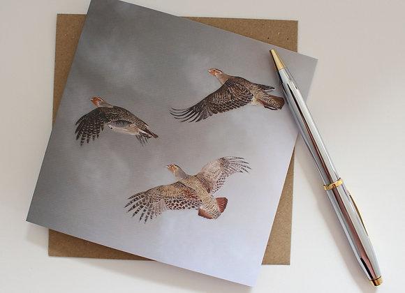 Flying Partridge Greetings Card
