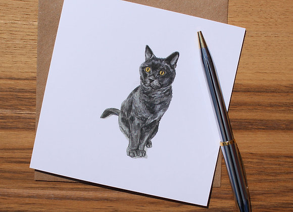 British Blue Cat Greetings Card (Trade)