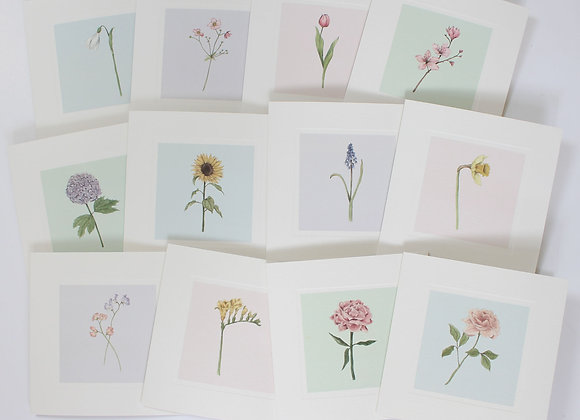 Mixed Pack of 12 Flower Greetings Cards