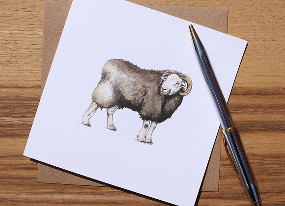 Herdwick Sheep Greetings Card (Trade)