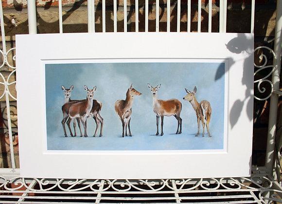 Five Deer