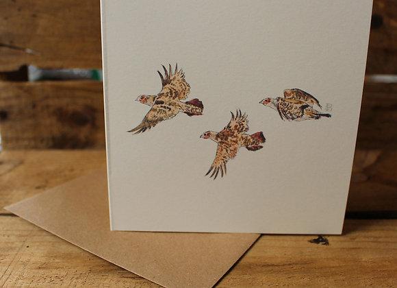 Partridge in Flight